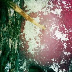 der Holzstock und der rote Boden