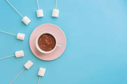 Marshmallows with chocolate in a beatiful background