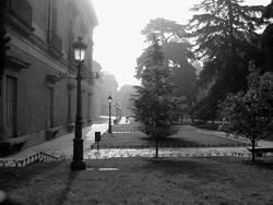 The Foggy Madrid