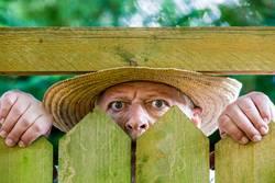 ein neugieriger Nachbar blickt über einen Gartenzaun