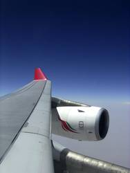 left wing