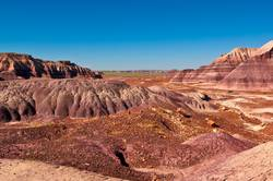 Purple Sands of the Petrified Forest