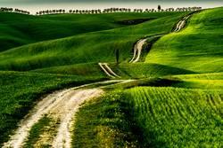 Weg zum Horizont der Toskana