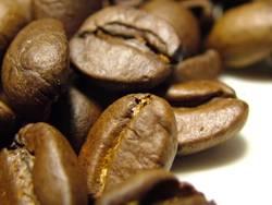 Kaffeebohnen #2