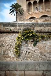 La Seu, Palma de Mallorca, Spanien