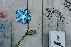 Mauer Flower