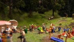 HEUTE: Ein Tag im Wald