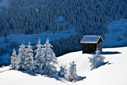 Der erste Schnee - Juche!