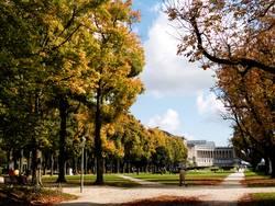 Jubel Park