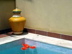 Sonnenkomposition mit Pool und Blumen