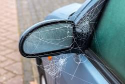 Frozen spiderweb on a car mirror