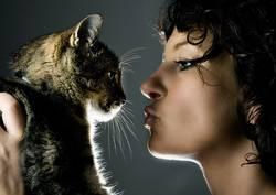 loving the animal