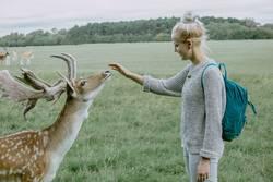 Alexa | Junge Frau trifft Hirsch