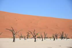Todestal - Dead Vlei - Sossusvlei - Namibia