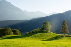 Bregenzer Wald - Schattenspiele