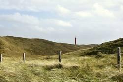 Leuchtturm Julianadorp - Blick aus den Dünen