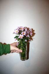 Blumen vor Raufaser.