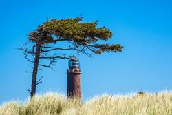 Leuchtturm Darßer Ort auf dem Fischland-Darß