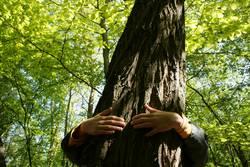 ich könnte heute Bäume ausreißen....