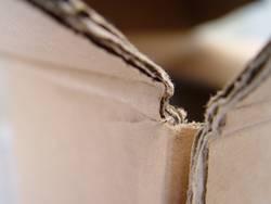 Aufriss eines Kartons