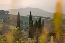 Streifzug durch die Toskana III