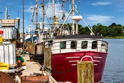 Fischkutter am Kai im Fischereihafen in Kappeln