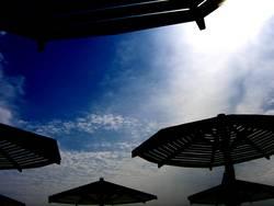 dark sunshades