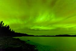Grüne Nacht