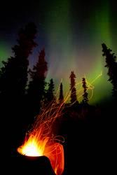 Aurora Feuer