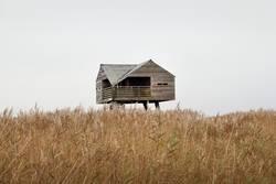 Haus im Schilf