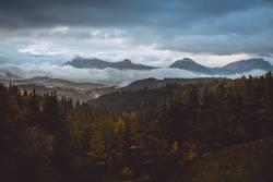 Wald- und Berglandschaft