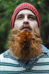 Adult man with branch in beard