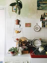 Küchenhai