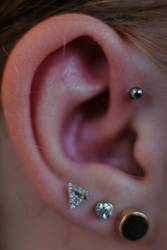 Das Ohr