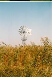 Windmühle in der Puszta