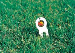 Die Gabel im Gras