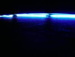 blue neon °2