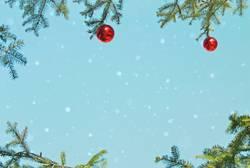 Schneeflöckchen... (IV)