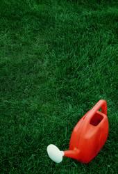 Rote Giesskanne