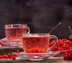 viburnum tea in cup