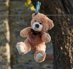 old teddy bear hanging on a clothesline