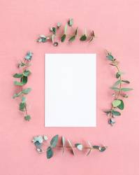Blank paper sheet framed by eucalyptus branches