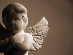 (B)engel-Kontrolle