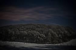 Winterwald bei Nacht