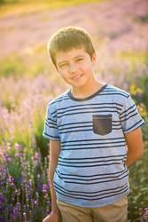 Lavendel Junge