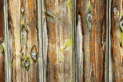 weathered wooden plank surface