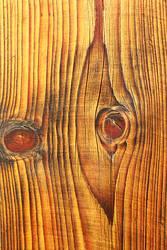 detailed texture of fir plank