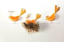 Fruit birds