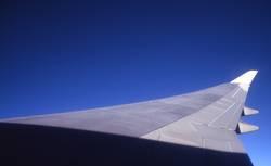 Der Flügel