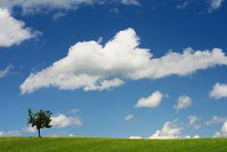 Wolkenhimmel über saftig grüner Wiese...